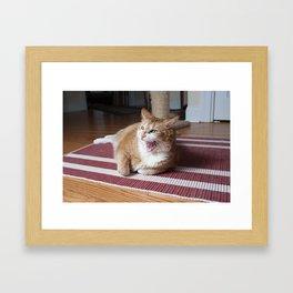 ROAR! I'm a Kitty! Framed Art Print