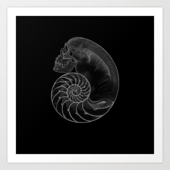 sea'sHell Art Print