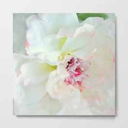 White waterflower Metal Print