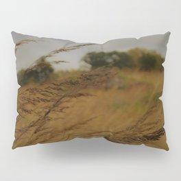 Amber Waves Pillow Sham