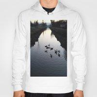 ducks Hoodies featuring Ducks by theedwardiangirl