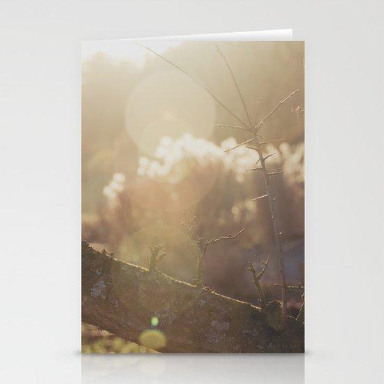 garden sunburst... Stationery Cards