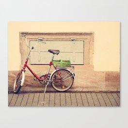 The Green Basket Canvas Print