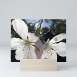 Cherry Flowers Duo Mini Art Print