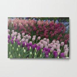 Hyacinth Springtime Flower Power Garden #1 Metal Print