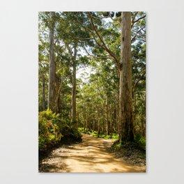 West Cape Howe National Park, Western Australia Canvas Print