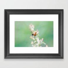 Enchanted Lady Framed Art Print