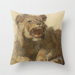 Cornelis Saftleven - A Lion Snarling Throw Pillow