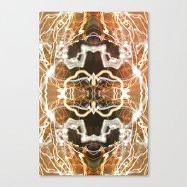 LED Lights Long Exposure Canvas Print