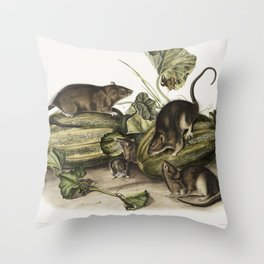 Columbia Pouched Rat (Geomys douglassii) from the viviparous quadrupeds of North America (1845) illu Throw Pillow