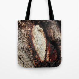 Aboriginal scarred Tree Tote Bag