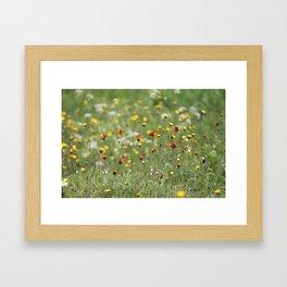 Blooming summer field Framed Art Print