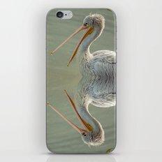 PELICAN PORTRAIT iPhone & iPod Skin