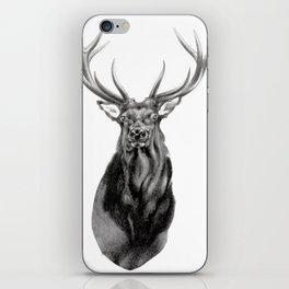 Bull Elk Encounter iPhone Skin