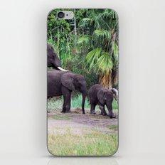 Elephant Walk - Safari iPhone & iPod Skin