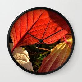 autumn colors Wall Clock