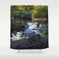 pigeon Shower Curtains featuring Pigeon by Elliott Kemp Photography