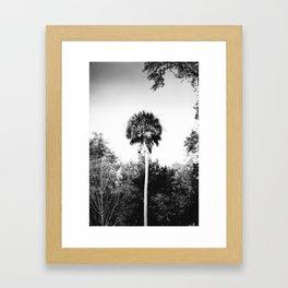 Palm Sunday Framed Art Print