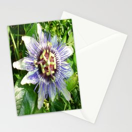 Passiflora Against Green Foliage In A Garden  Stationery Cards