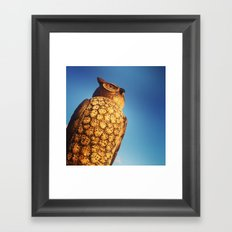 Watch Owl Framed Art Print