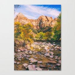 A River in Zion National Park Fine Art Print Canvas Print