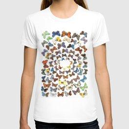 Butterflies 1 T-shirt