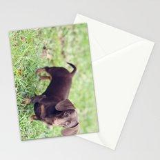 Chocolate Anyone? Stationery Cards