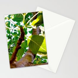 Under the Pear Tree  Stationery Cards