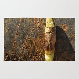 Horsetail against a Rusted Culvert Pipe Rug
