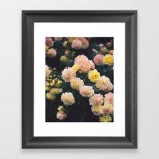 Rose Garden Framed Art Print