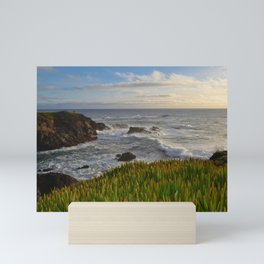 evening light Mini Art Print