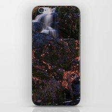 Waterfall Wyandotte Falls, MI iPhone & iPod Skin