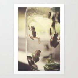 Frogs in a Jar 1 Art Print