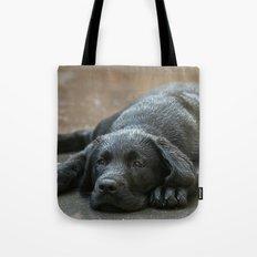 Labrador dog in the rain ! Tote Bag