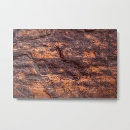 Closeup of petrified wood from New Mexico Metal Print