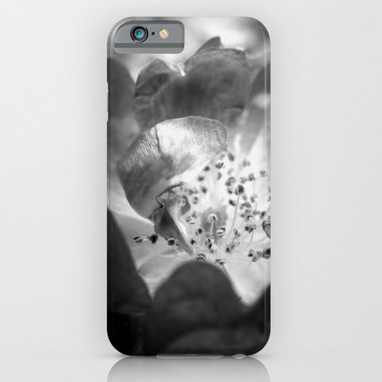 Light Comes From Within iPhone & iPod Case