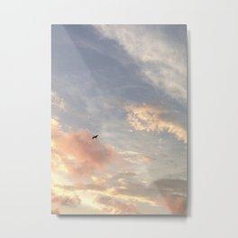 Sky / Bird Metal Print