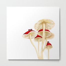 Ladybird home Metal Print