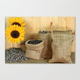 Sunflower, seeds, burlap bags, wooden table Canvas Print