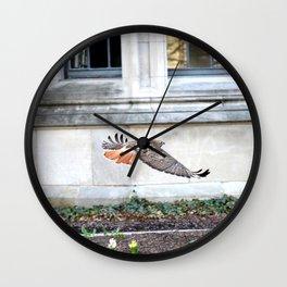 Floating urban hawk 12 Wall Clock