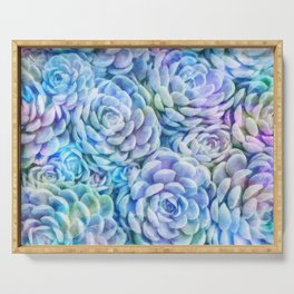 Rainbow succulents Serving Tray