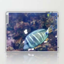 Stunner Fish Laptop & iPad Skin
