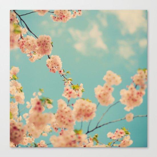 Splash of Pink Canvas Print