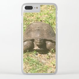 Cabbage Key Tortise Clear iPhone Case