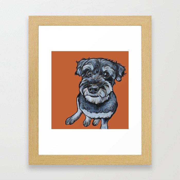 Frankie the Schnoodle Framed Art Print