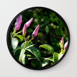Flowering in Mexico Wall Clock