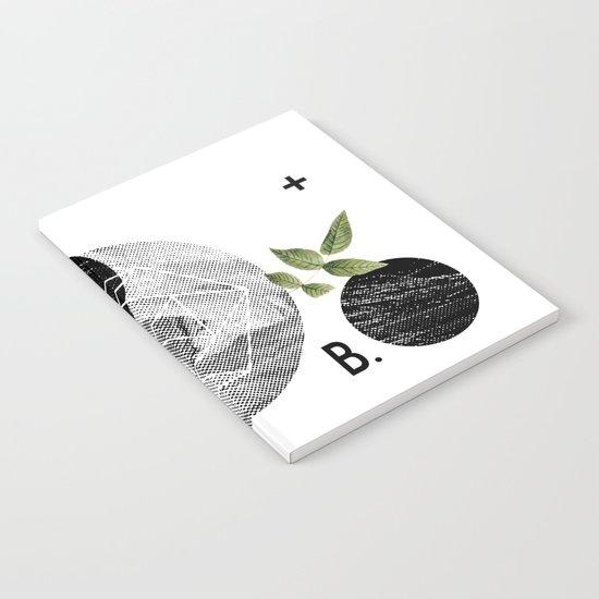 B-plus. Notebook