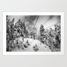 Hanging in the Canopy Art Print