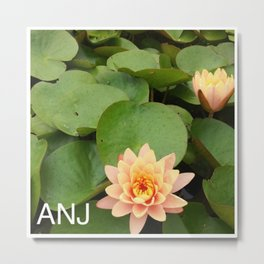 a Pond Flower Metal Print