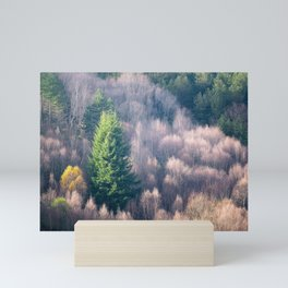The Forest of Light Mini Art Print